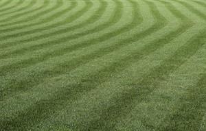 commercial lawn maintenance wayne nj