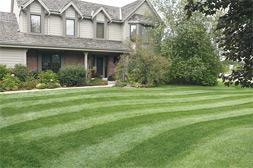 Lawn Maintenance Service in Wayne, NJ